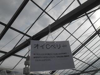 200112-09.JPG