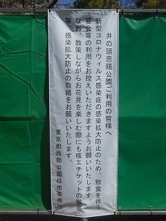 200325-07.JPG